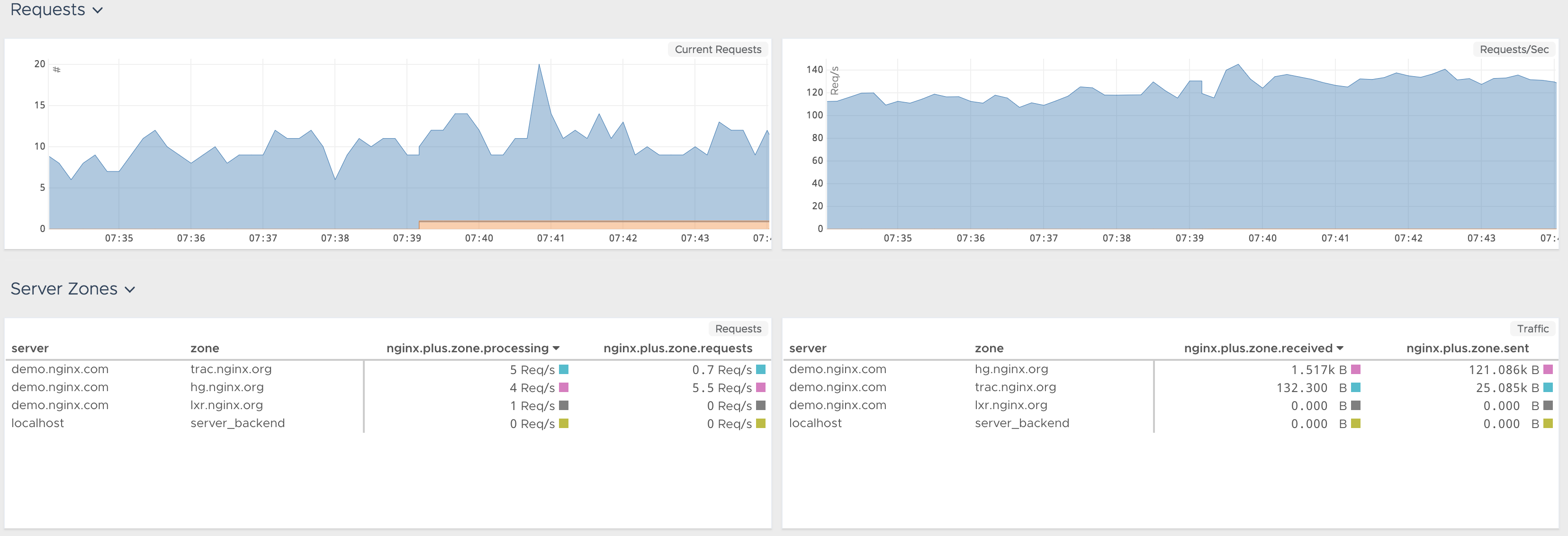 images/nginxp_dashboard3.png